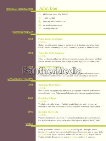 modern resume cv template for job