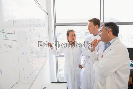 science students and lecturer looking at
