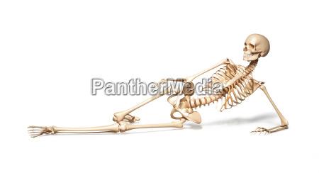skeleton of human female lying on