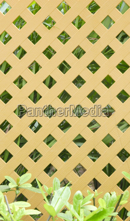 gardening brown fence with green plants