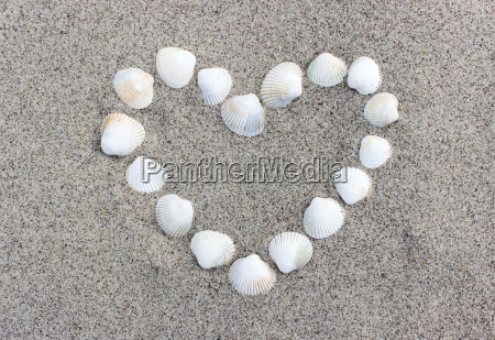 heart made of shells on the