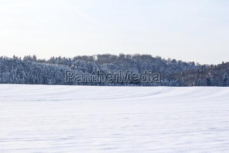 wide winter wonderland