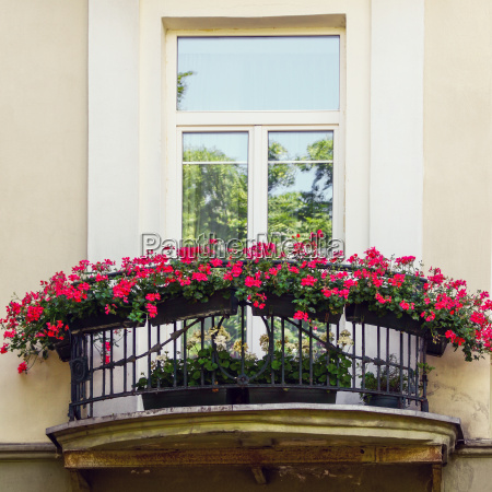 balcony with red flowers