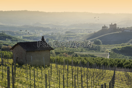 spring view the langhe unesco heritage