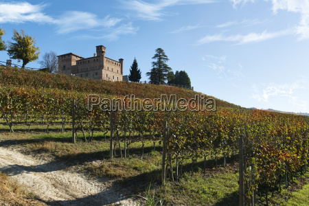 view of autumn the langhe unesco