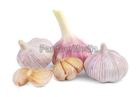heads of young and mature garlic
