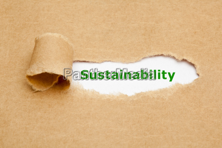 sustainability torn paper concept
