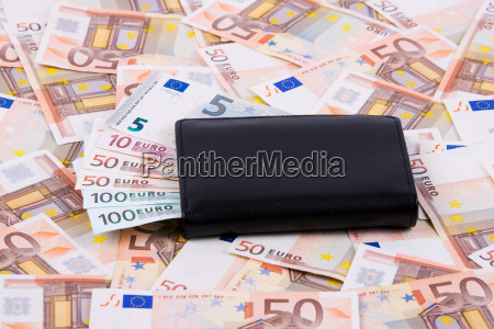 wallet with european money