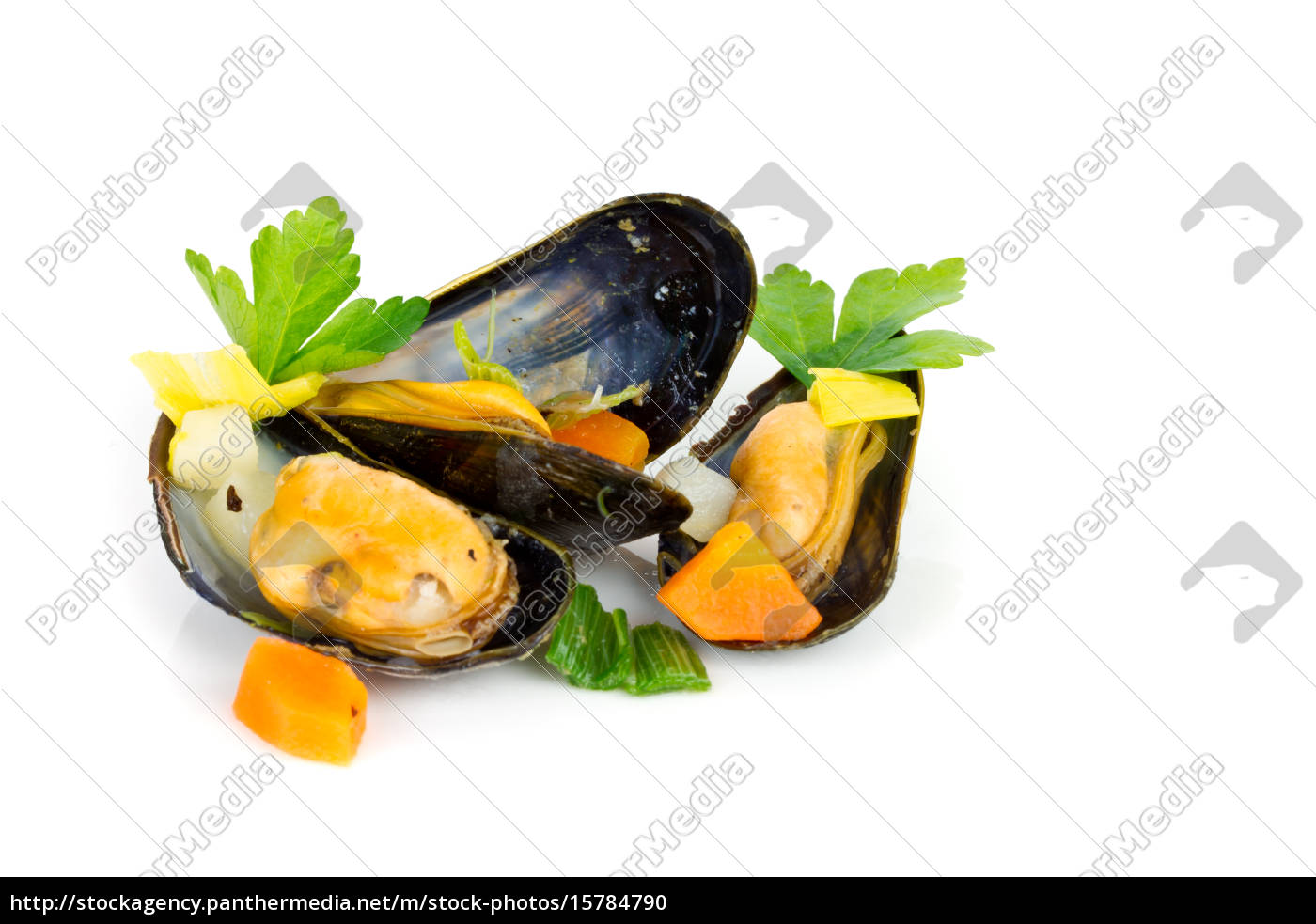 cooked, mussels - 15784790