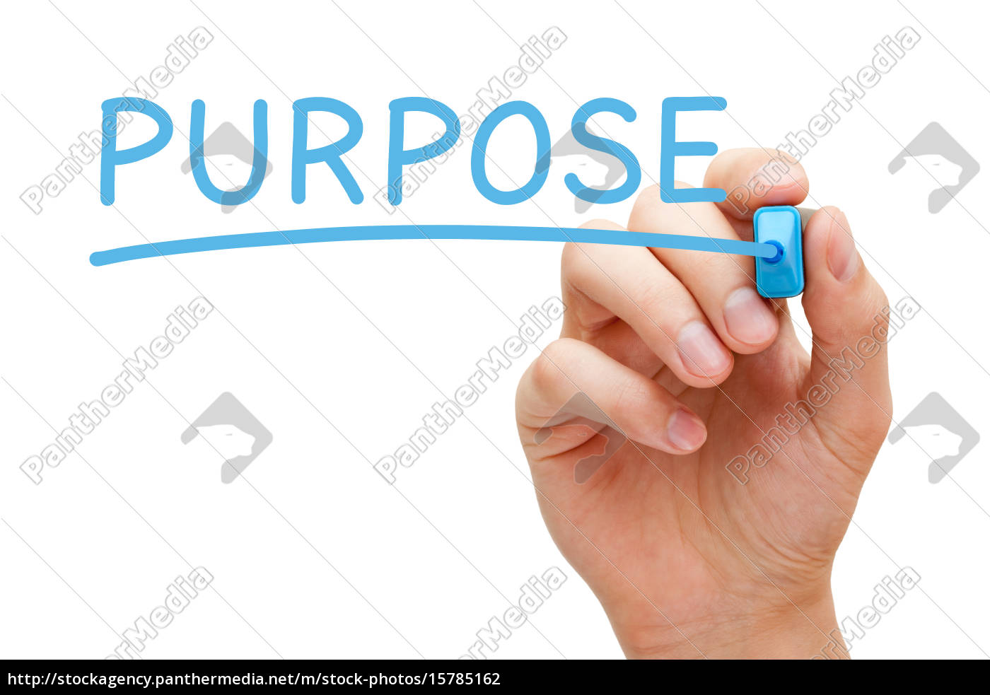 purpose, blue, marker - 15785162