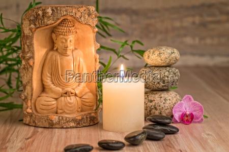 wellness - 15785552