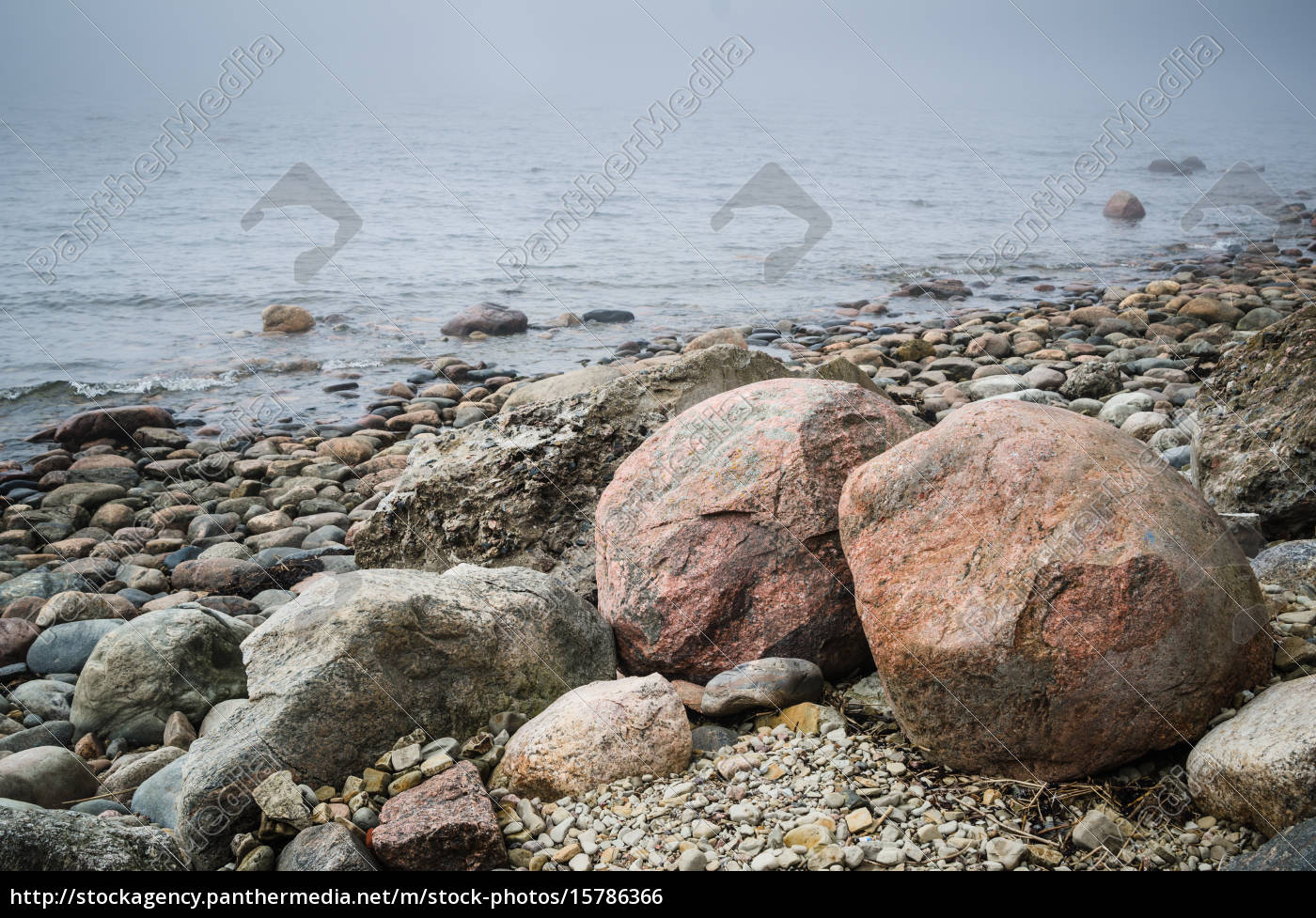 coast, of, baltic, sea, in, a - 15786366