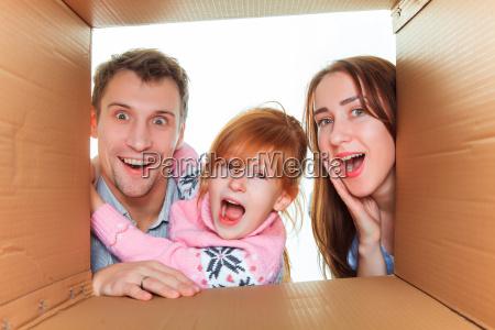 family, in, a, cardboard, box, ready - 15787310