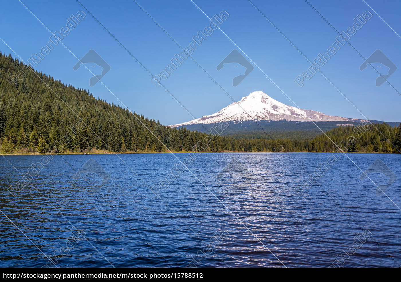 mt., hood, and, trillium, lake - 15788512