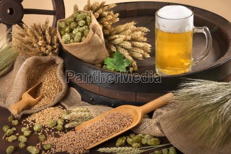 beer, ingredients - 15791138