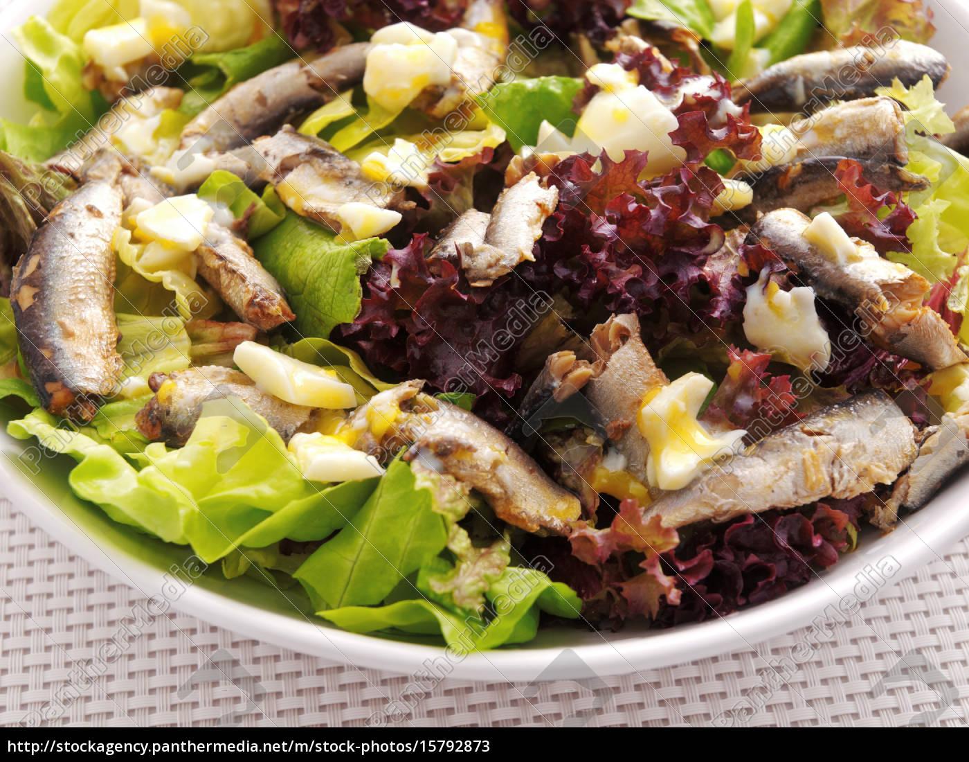 chicken, salad, chicken, salad, chicken, salad, chicken, salad, chicken, salad, chicken - 15792873