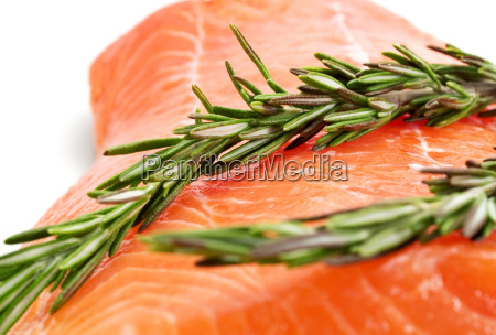 raw salmon with rosemary raw salmon
