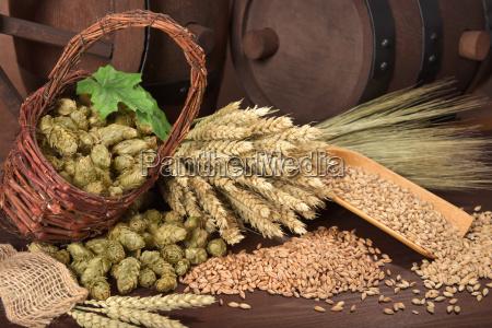 beer, ingredients - 15796613
