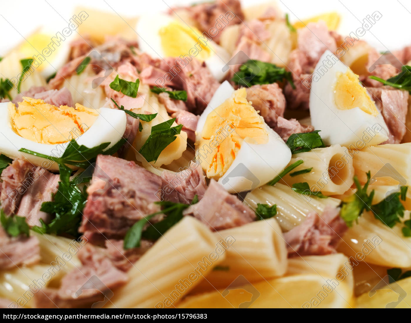pasta, collection, -, macaroni, with, tuna, pasta - 15796383