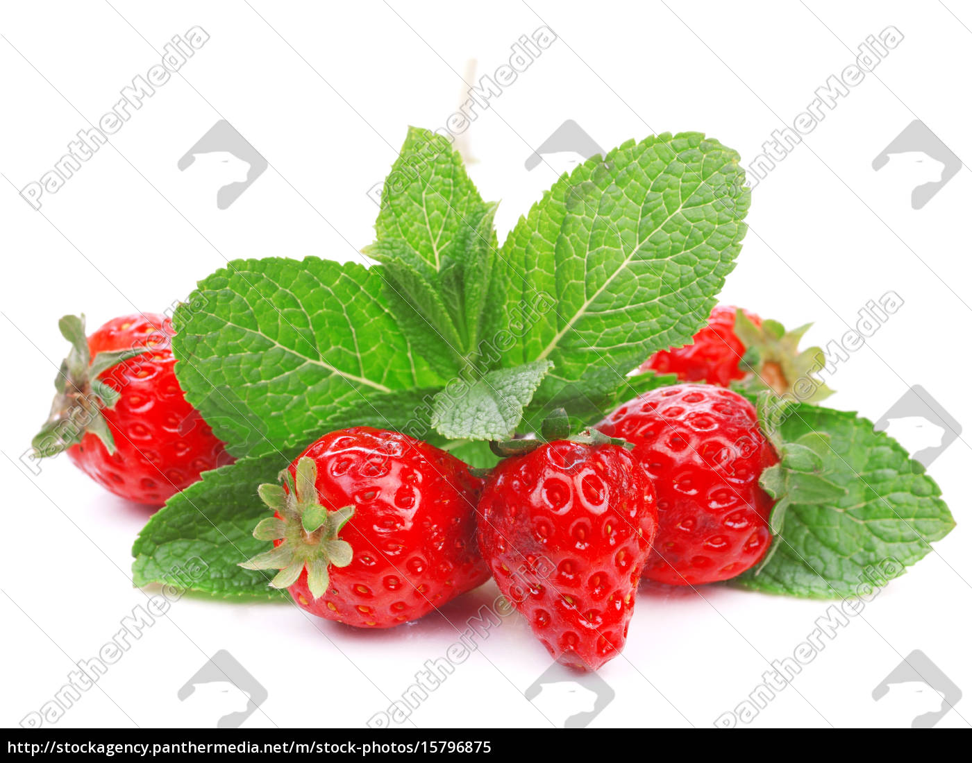strawberries, strawberries, strawberries, strawberries, strawberries, strawberries, strawberries, strawberries - 15796875