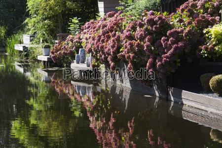 waterfront garden in autumn