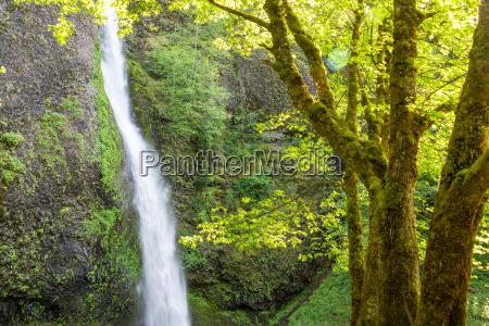 horsetail, falls, view - 15799367