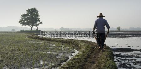 a farmer driving a wheelbarrow at