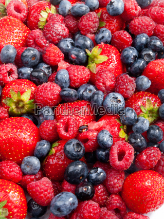 berries, berries, berries, berries - 15801101