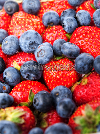 blueberries, blueberries, blueberries, blueberries - 15801095