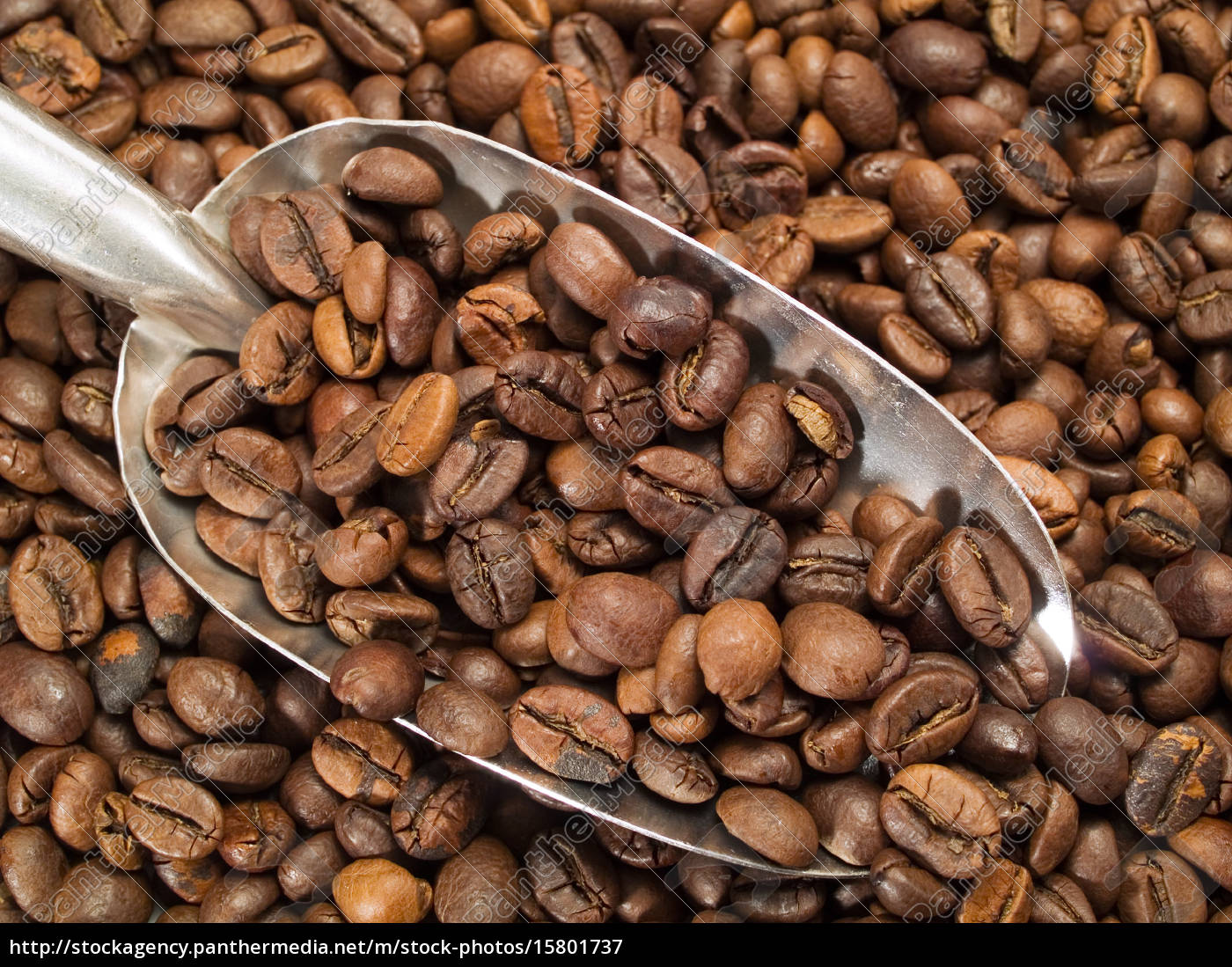 coffee, beans - 15801737