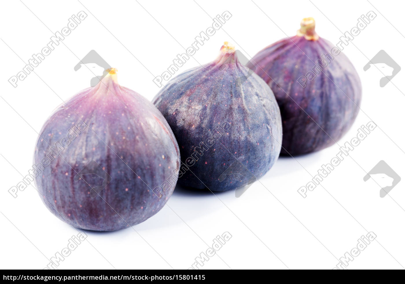figs, in, a, row, figs, in, a - 15801415