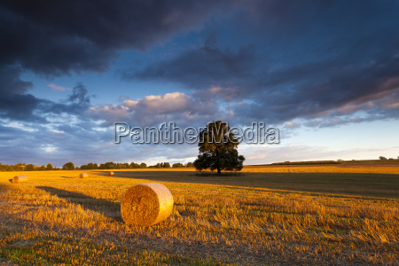 straw bales and fields in the