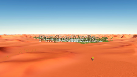 desert landscape with an oasis