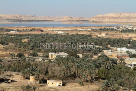 the oasis of siwa in the