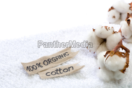 white bath towel with cotton branch