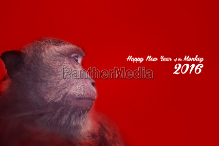 chinese new year design with monkey