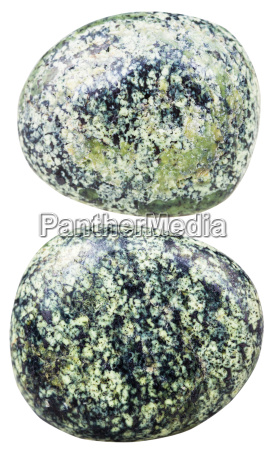two tumbled serpentine gemstones isolated