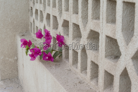 decorative concrete fence