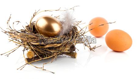 golden egg in nest on white