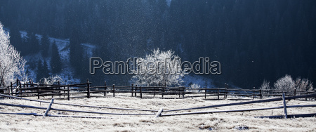 hoarfrost covered rural landscape