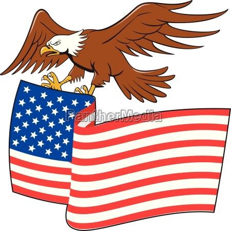 american bald eagle carrying usa flag