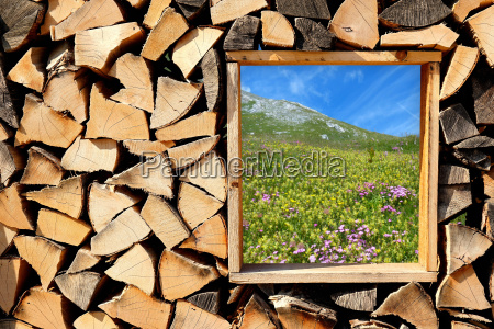 wooden wall with a view of