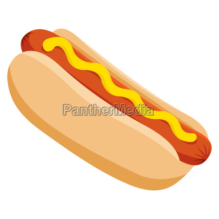 isolated vector delicious hot dog illustration