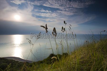 baltic sea in the summer sun