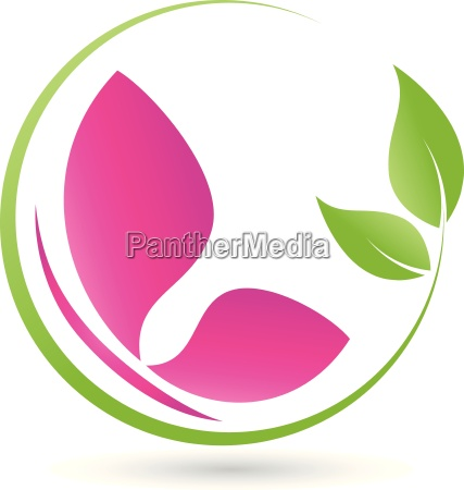 leaves and butterfly butterfly insect logo
