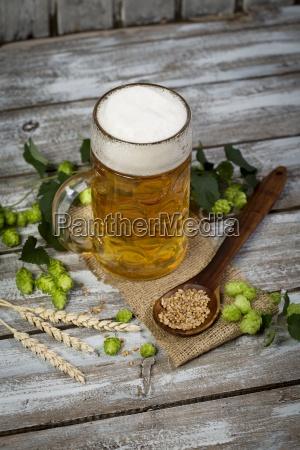 beer in a beer mug hop