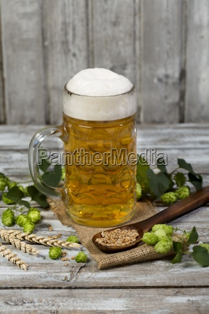 beer in a beer mug hop