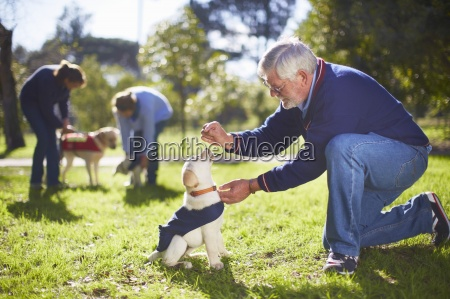 guide dogs at dog training
