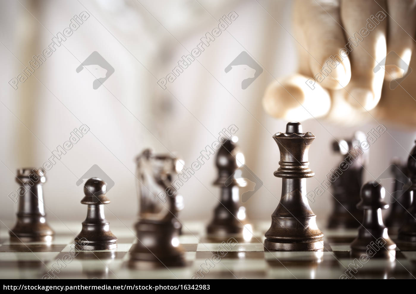 chess, player - 16342983
