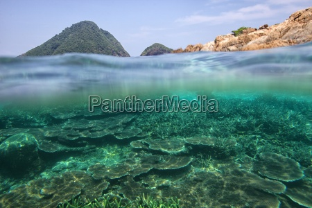malaysia south china sea tioman island